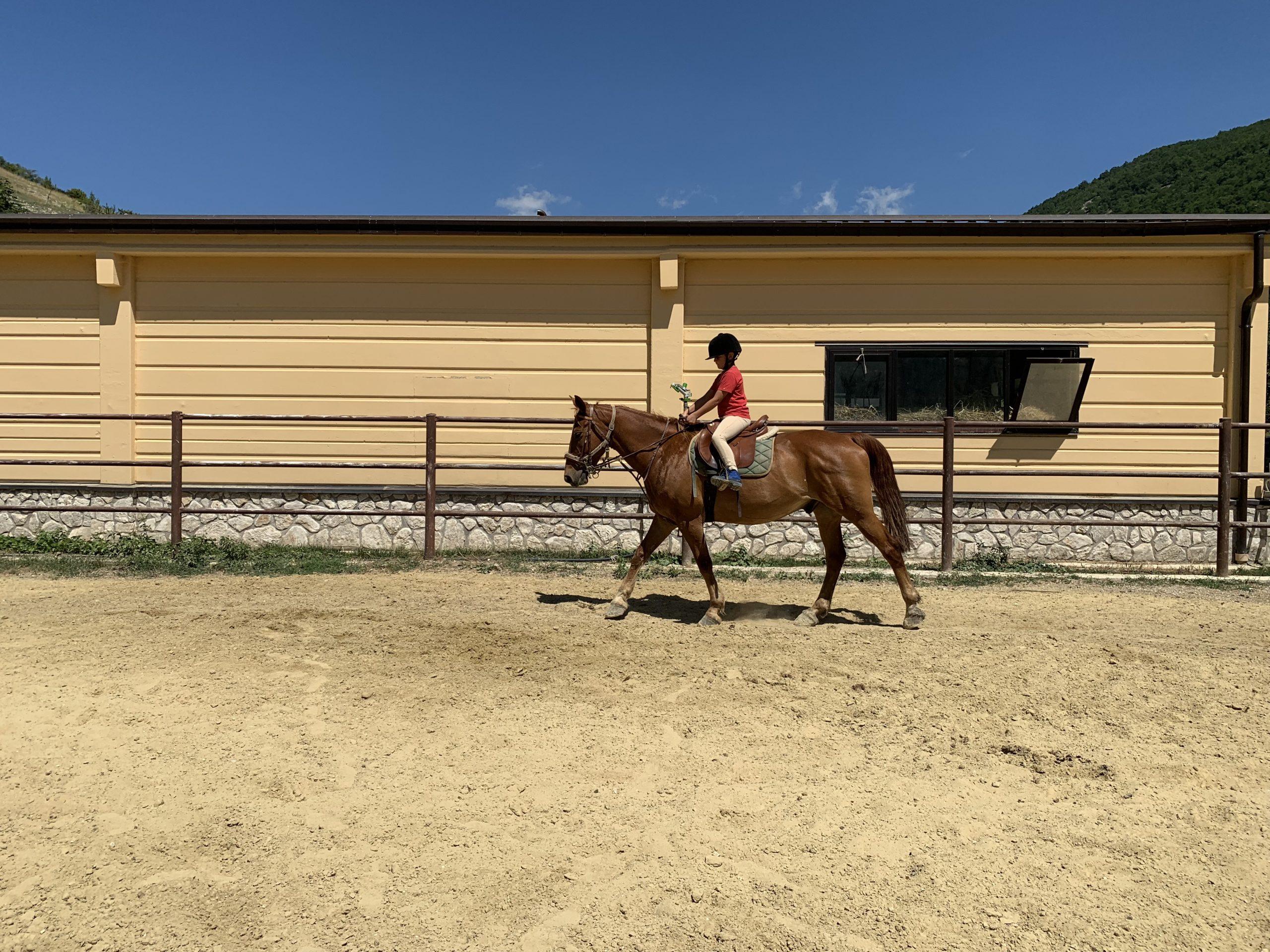 Lezione a cavallo